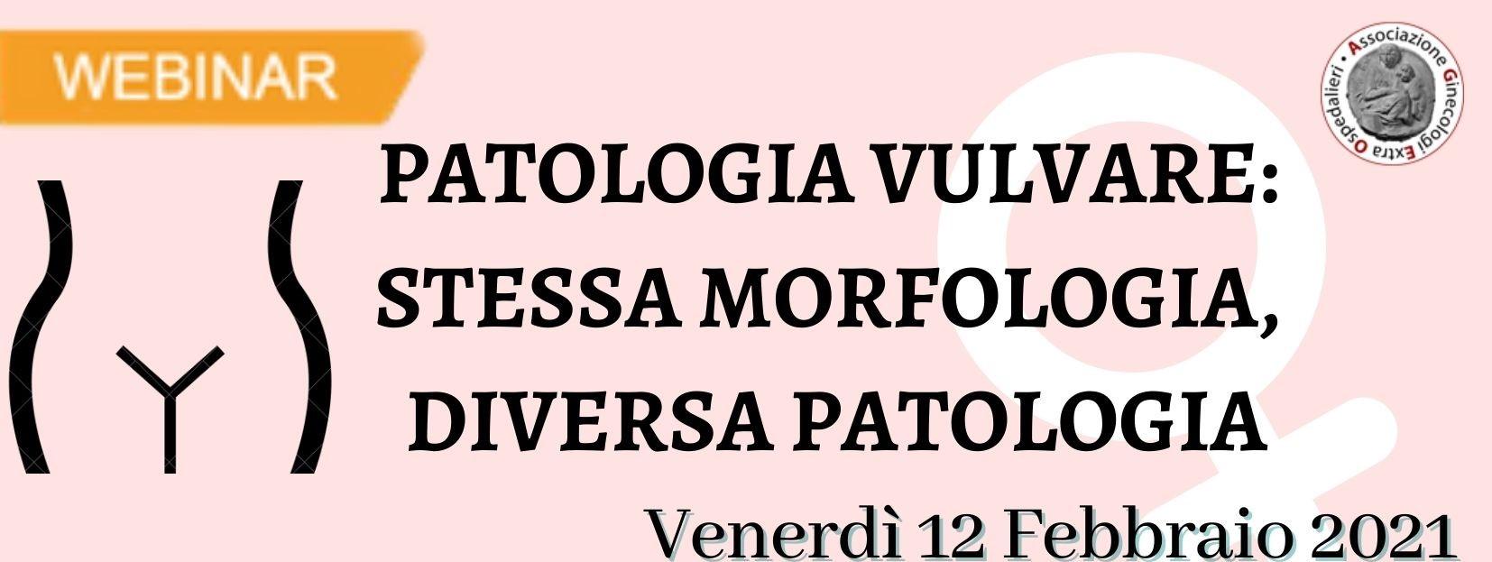 Patologia vulvare: stessa morfologia, diversa patologia